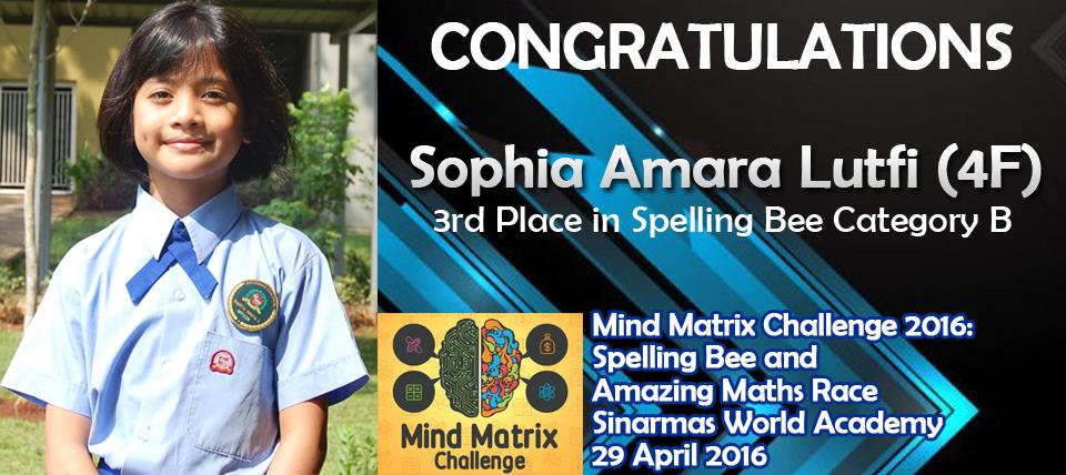 Acc_Mind-Matrix_Sophia